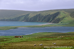 Fetlar, Shetland © Patrick Dieudonné Photo, www.patrickdieudonne.com, all rights reserved